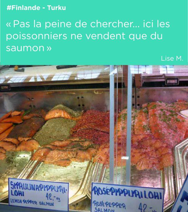 finlande saumon