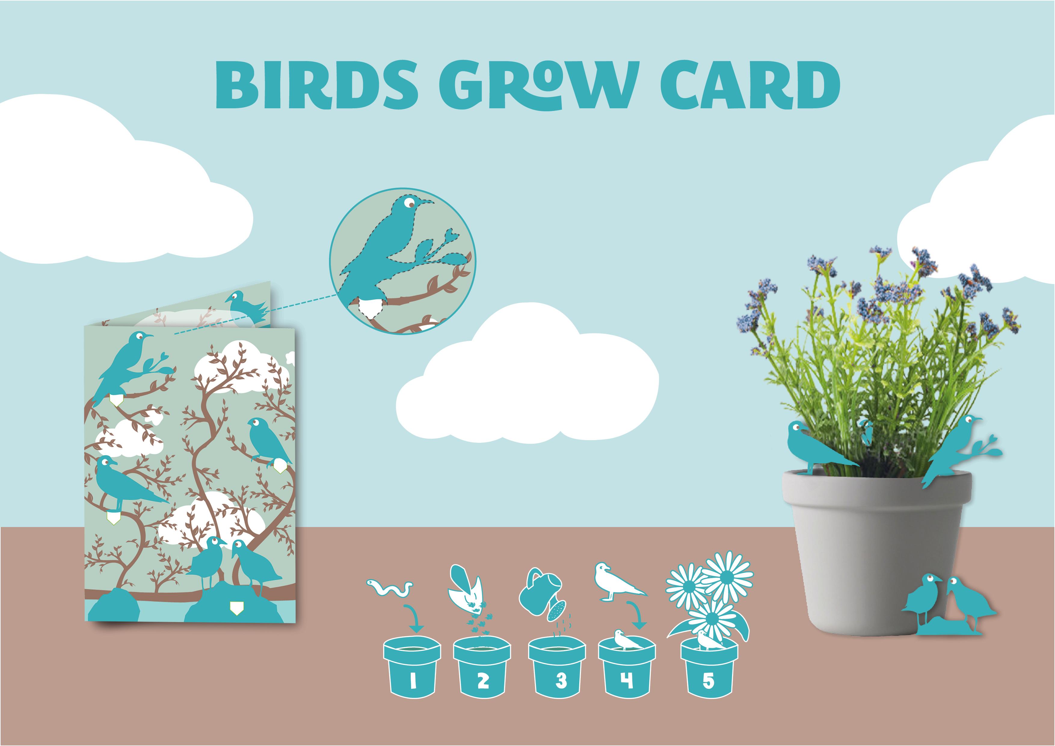 illustration carte anniversaire graphiste freelance strasbourg seed paper nature